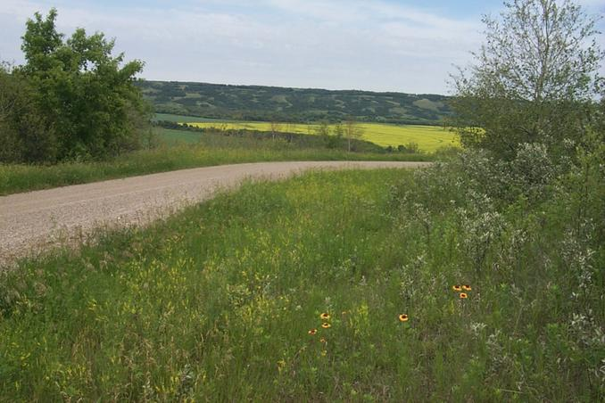 The Assiniboine River Valley.  The valley is about 7 km east of the CP.