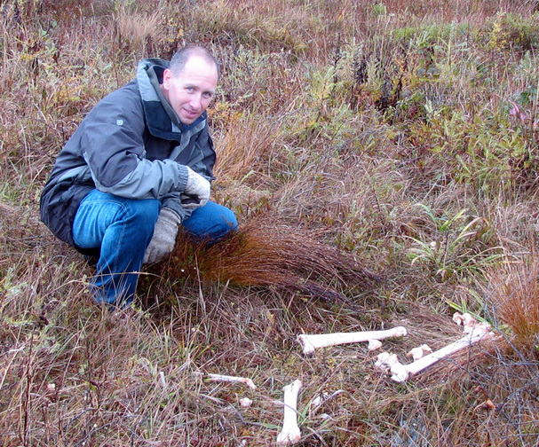 Todd looks at moose bones.