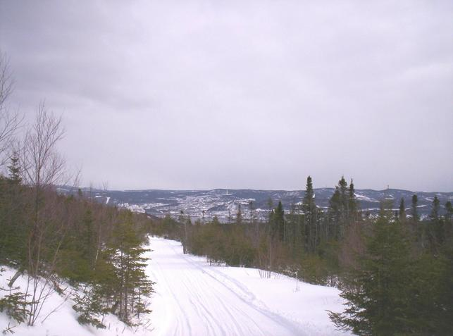 View of snowmobile trail looking south to Corner Brook