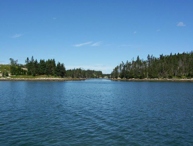 Typical scenery among the islands in Liscomb Harbour