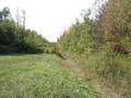#5: Trail (ditch) from where I parked