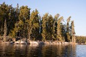 #6: Typical shoreline on the lake