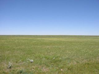 #1: Looking North into Saskatchewan.