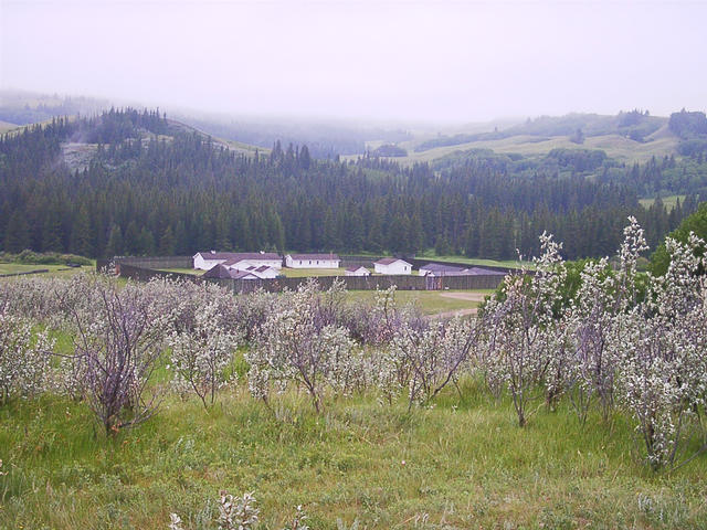 Fort Walsh in the Cypress Hills