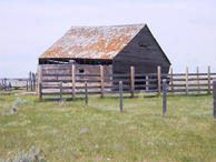 #5: Homestead Barn