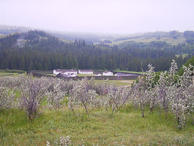 #7: Fort Walsh in the Cypress Hills