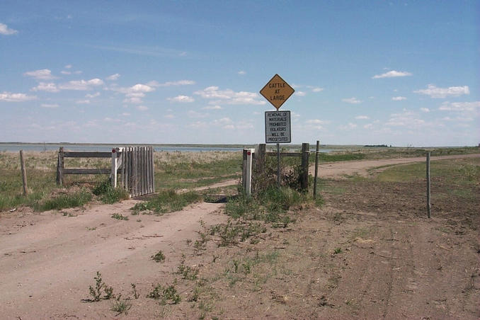 Texas cattle gate at entrances to pasture. Old Wives Lake seen on left in background.