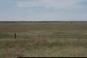 #4: Looking west.  More pasture and prairie.