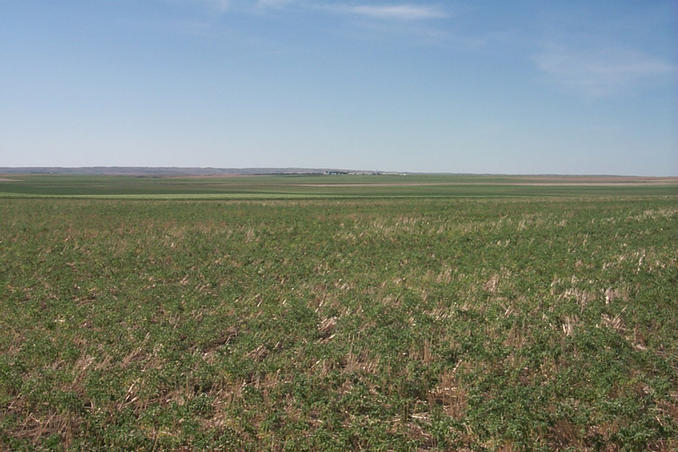 Looking northwest showing the Hutterite Colony in the center.