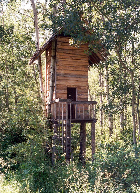 The two-story tree house, 30 meters from the confluence