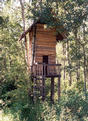 #2: The two-story tree house, 30 meters from the confluence