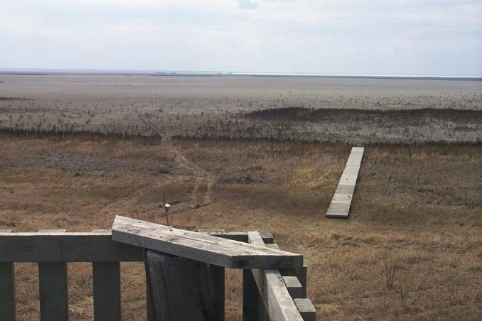"The VERY dry Wadena ""Wetlands"" as seen from the viewing stand.  The white line on the horizon is the ice on Little Quill Lake."