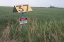 #9: Marker for the natural gas pipeline passing through the field where the confluence lies.