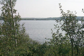 #1: Looking south at Martin's Lake.  The confluence lies about 190 m away from this point.