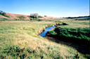 #5: Creek near confluence, dry in places