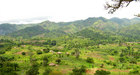 #4: Landscape of the transition between the high plateau and the rift valley