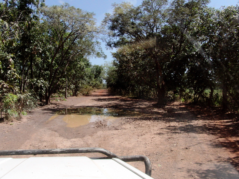 Dirt road between Confluence and M'Benge