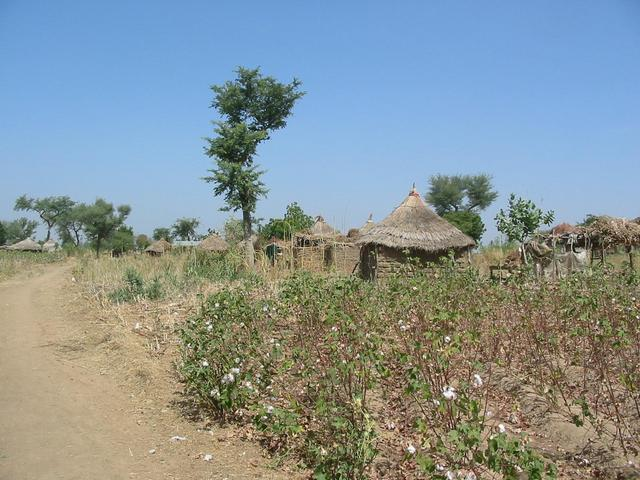 Village near the Confluence