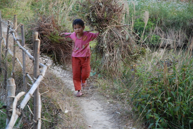 Hard working girl returning to the village