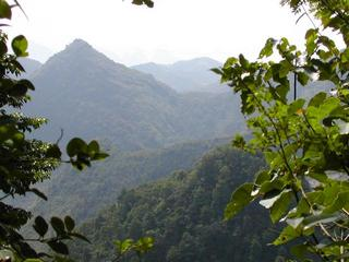 #1: View from the confluence point to the West