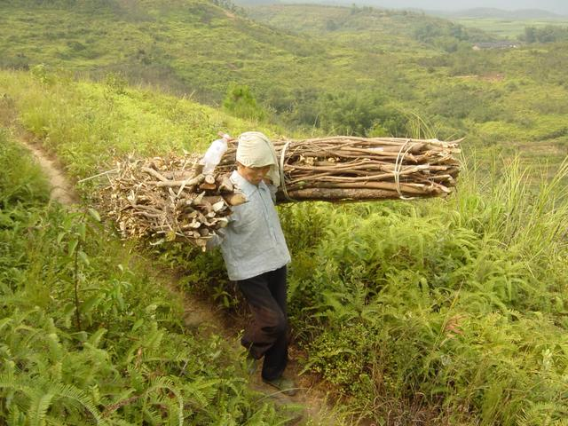 Backbreaking work: carrying wood out of the mountains