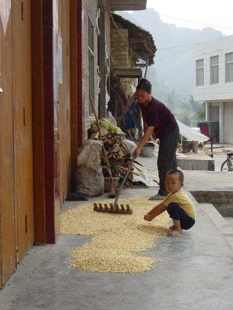 Woman spreading corn out to dry while her son looks on