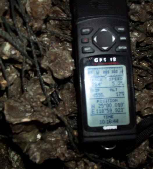 GPS on snail shells.