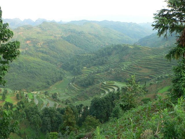 Terraced rice paddies in the valley below Gélì.