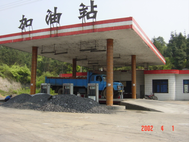 Petrol station with pine forest behind