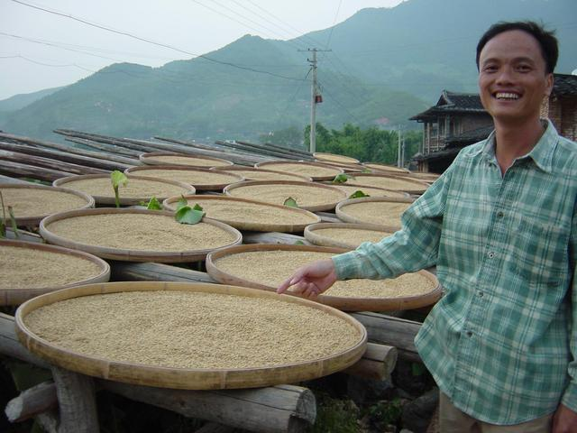 Mr Chen Changge, village chief, with freshly harvested rice drying in sun