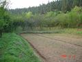 #4: Small orchard behind the farmhouse