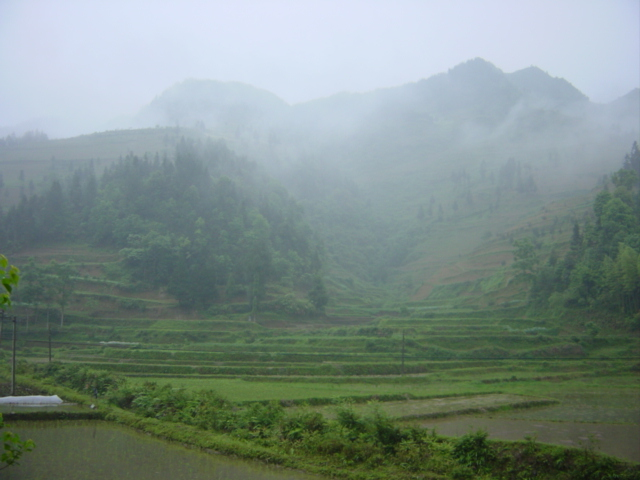 View of the misty mountains in which the confluence is located, 750 metres to the east