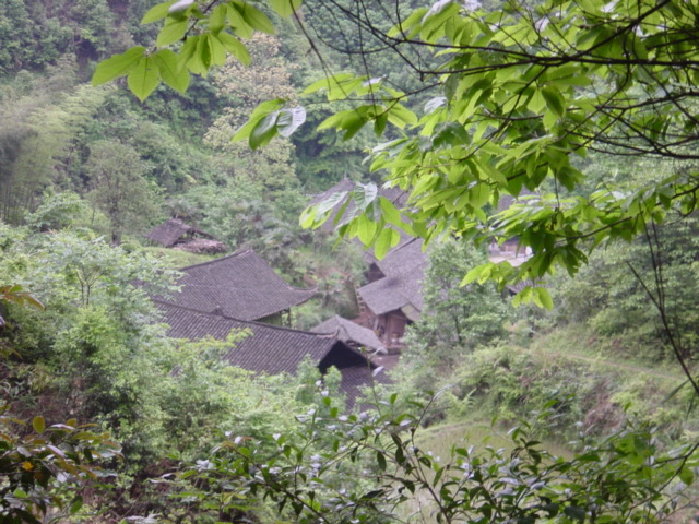 Tiny village near confluence, beautifully nestled amongst the trees of a heavily wooded valley
