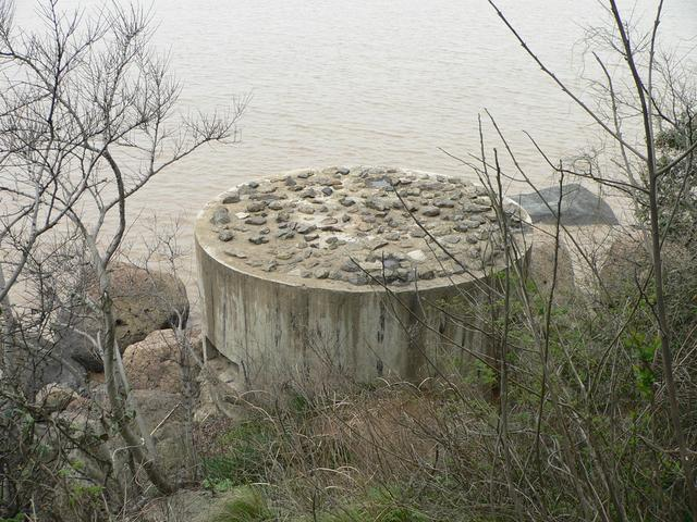 Cement observation pillbox