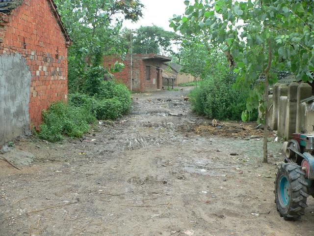 Muddy dirt road passing through village.