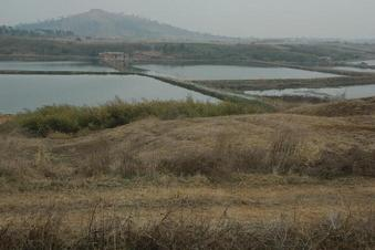 #1: Confluence point 25 meters away on a small hill overlooking the fish ponds