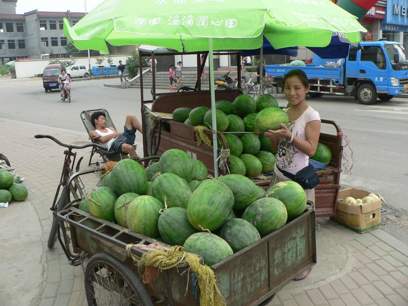 Ah Feng selecting a watermelon in Tài'ān