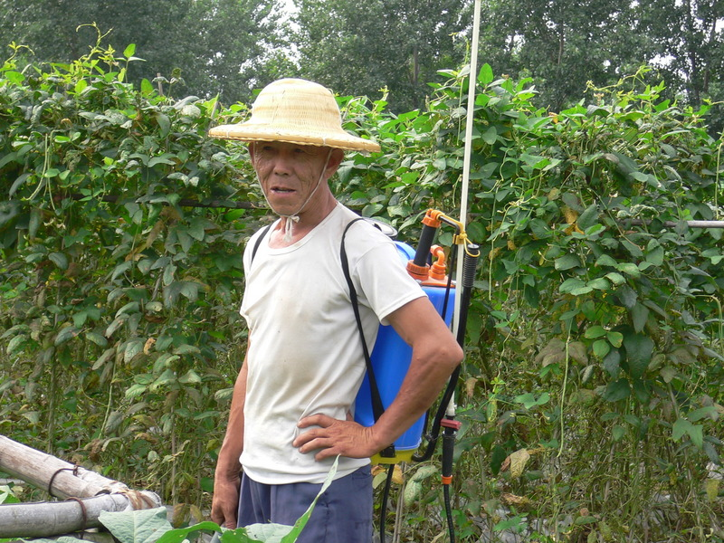 Farmer wearing a poison-spraying backpack