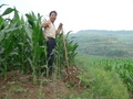 #8: Farmer in cornfield near confluence