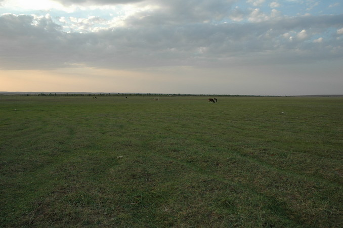 The nearby grass field