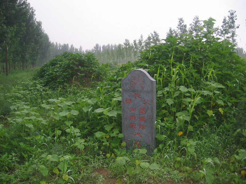 The Graves at a Distance of 30 m
