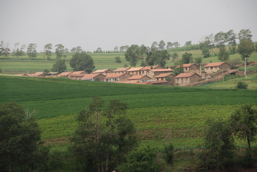 Village with Confluence in the Background