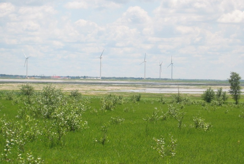 The Windmills Nearby