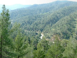 #1: View of the road to Kannavia about 175 metres from the confluence