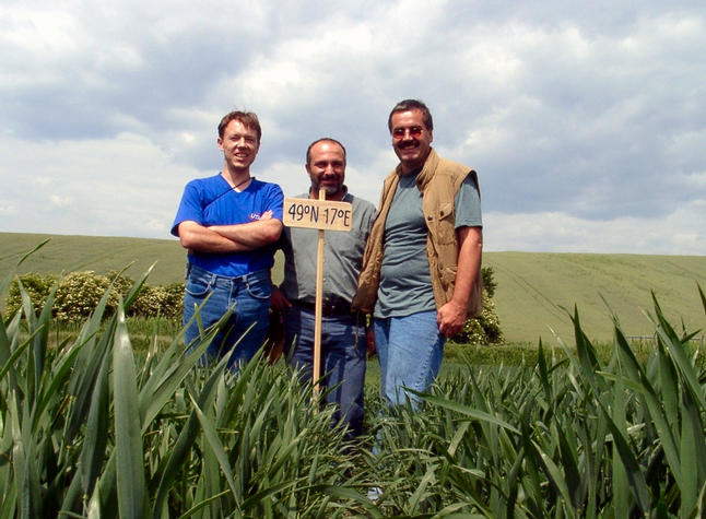 Martin, Klaus & Hans in the middle of a wheat field