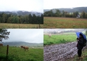 #8: Branišovský vrch ridge, nearby pasture and very muddy road...