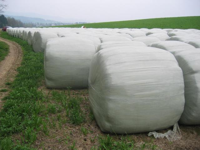 The Silage Bales