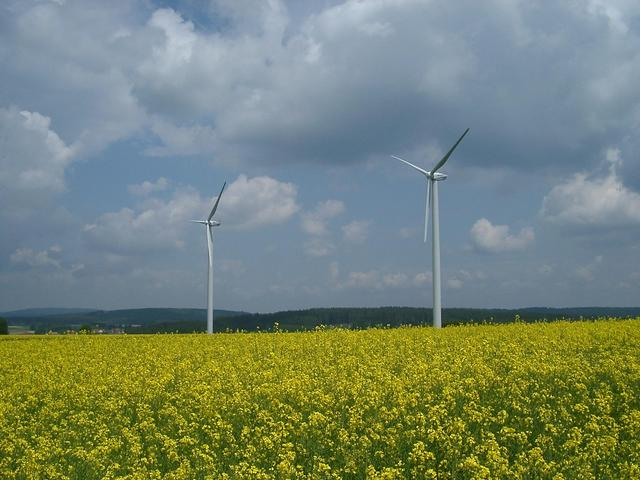 Proceeding towards confluence area: flourishing rape field with wind engines on the Ostalb