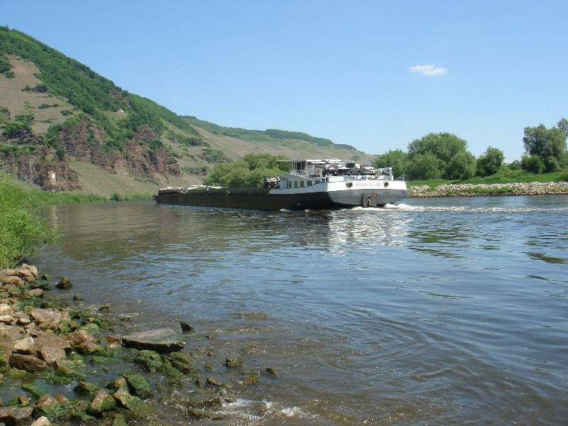 Vessel Transport on River Mosel / Frachter auf der Mosel