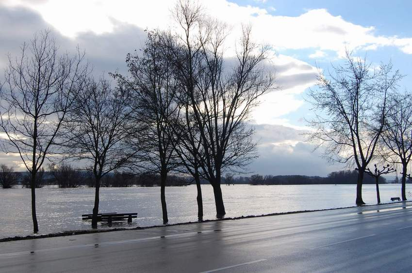 high water level at the Rhine